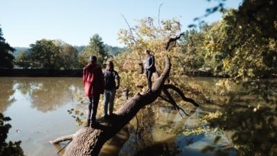 dobrodružství na spadlém stromě